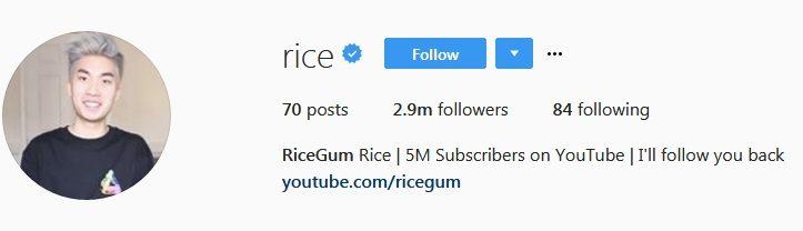 ricegum-instagram